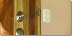 Poison dart frog on door
