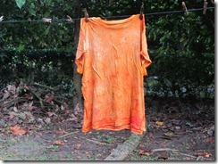 Shirt dyed with achiote