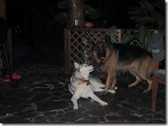 Tassle and Kaya