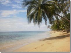 Calm Punta Uva