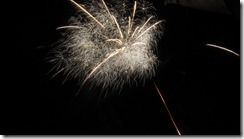 New-Year-fireworks_thumb