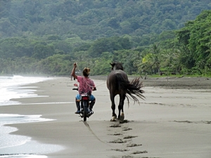 Now that is the way to walk a horse on the beach!